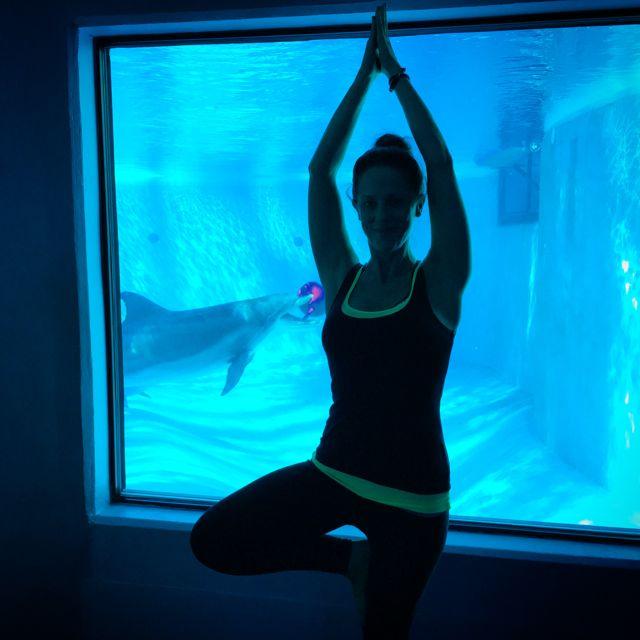 Dolphin Yoga Adventure