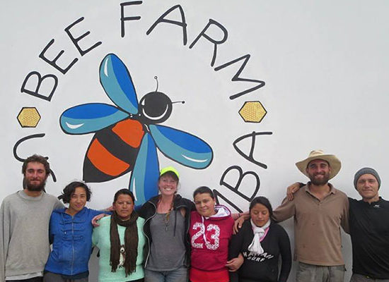 bee-farm-mural-head